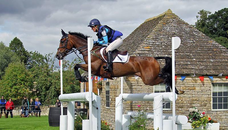 purificare fieno cavallo performance
