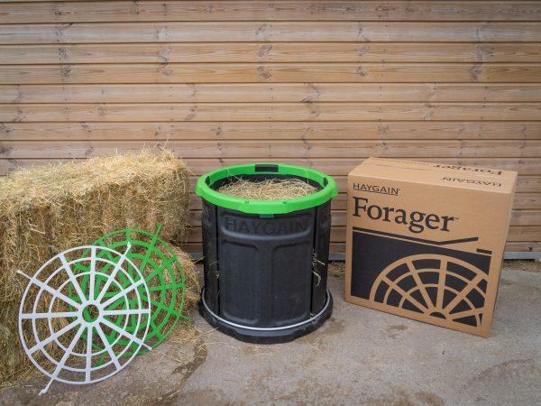 forager confezione