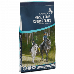 horse & pony cooling cubes saracen